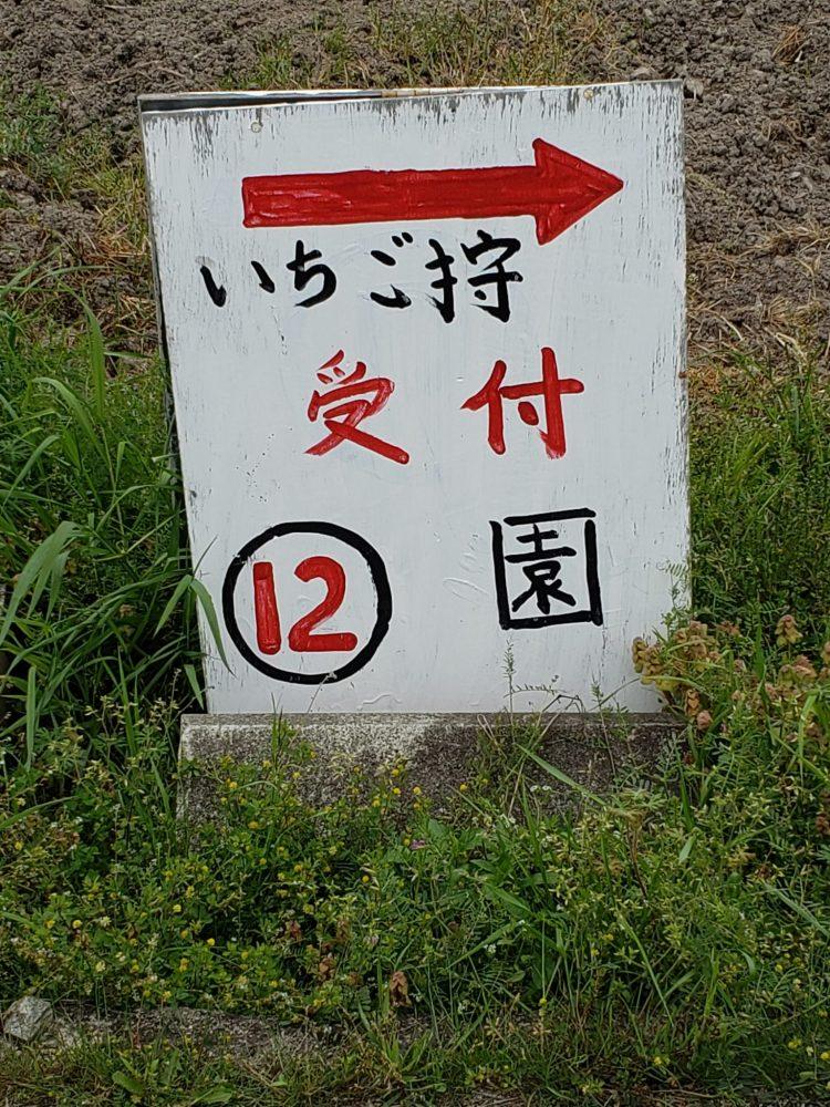 兵庫県 二郎農園 いちご狩り