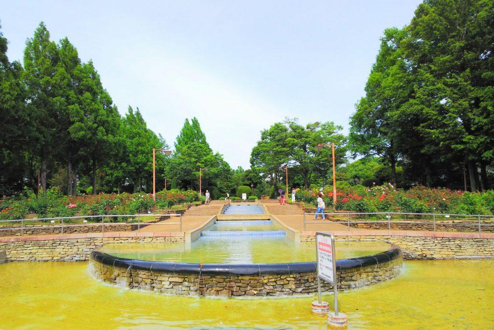 神奈川 相模原北公園
