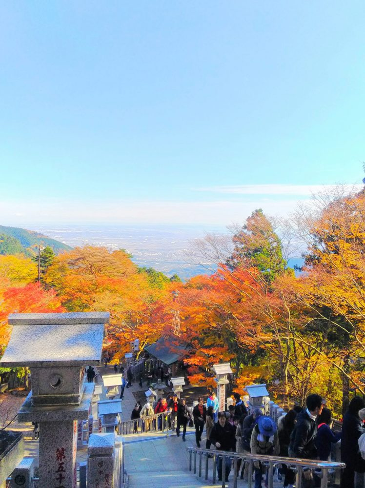 神奈川県 大山 紅葉