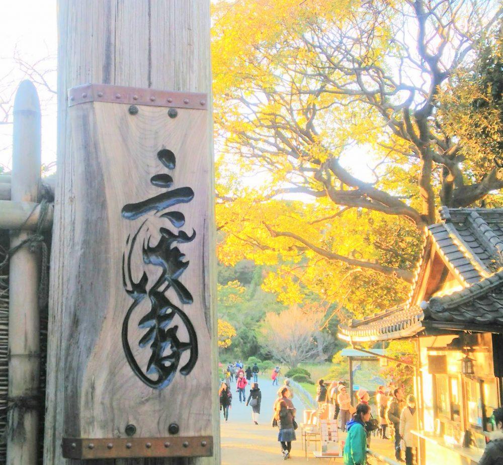 三渓園 紅葉