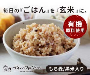 玄米パックご飯
